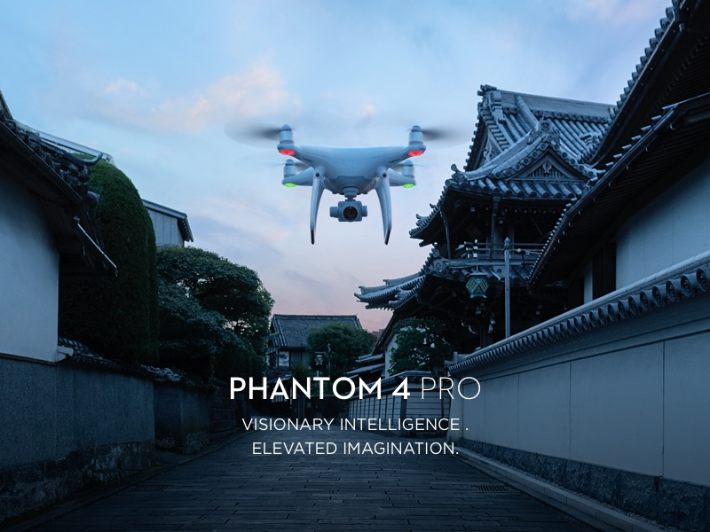 Phantom 4 Pro or Pro+ E V Mayberry Explorer Combo